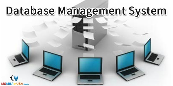 MS in Database Management System